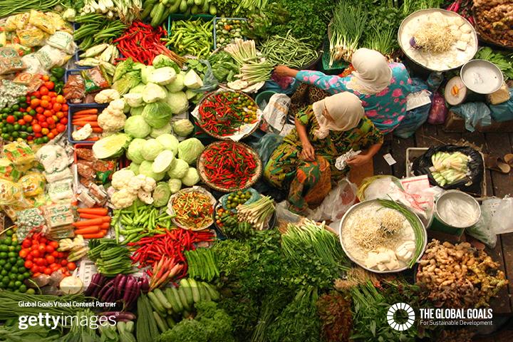 Gutes Essen für die Gesundheit und gleichzeitig die Welt retten? – Dieser Speiseplan hilft Dir dabei